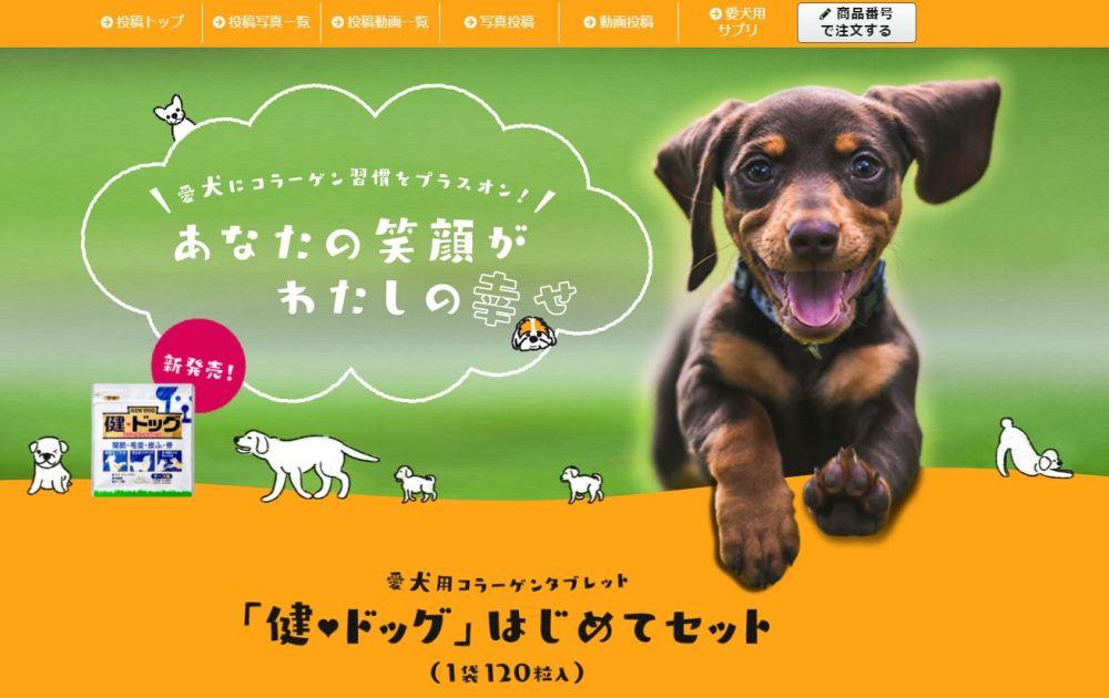 健ドッグ 犬用コラーゲンタブレットで愛犬の関節・毛並みに効果